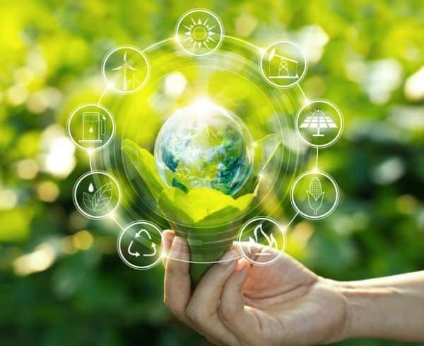 Companies must go green to survive